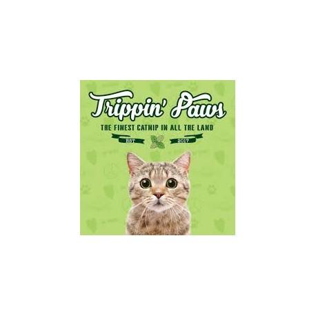 Trippin Paws CatNip